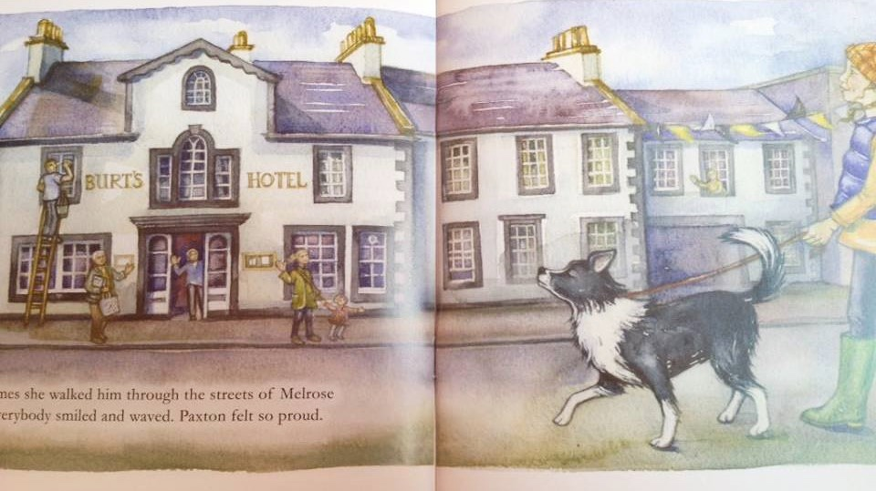"""Paxton, the sheepdog who couldn't…"" – Could he be the next Katie Morag?"